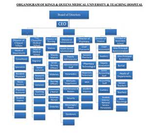 Staff Organogram Template by Organogram Of Kqth And
