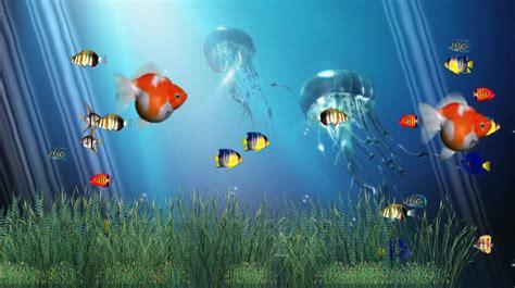 download liquid of life animated wallpaper desktopanimated com animated ocean desktop wallpaper wallpapersafari