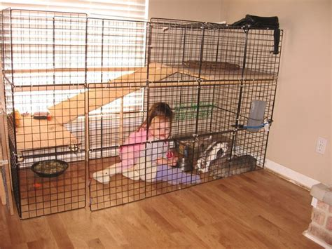 Handmade Rabbit Hutches For Sale - the best bunny cage for your rabbit gossip news rabbit