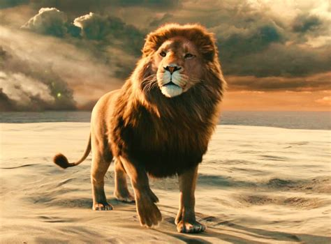 film web narnia the nucleolus of narnia is aslan narnia thinglink