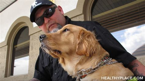 how to a ptsd service ptsd service dogs how they help and where to find them ptsd ptsd and stress