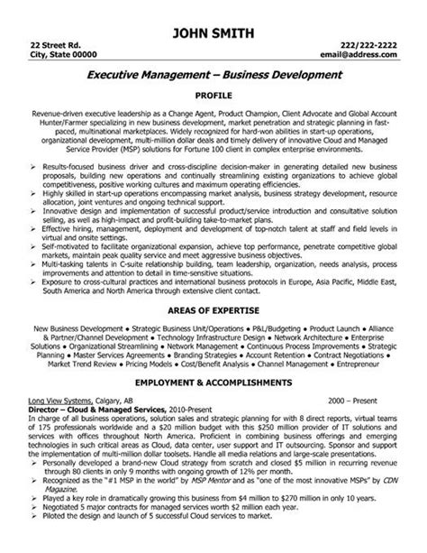 Resume Sle For It Executive Click Here To This Executive Director Resume