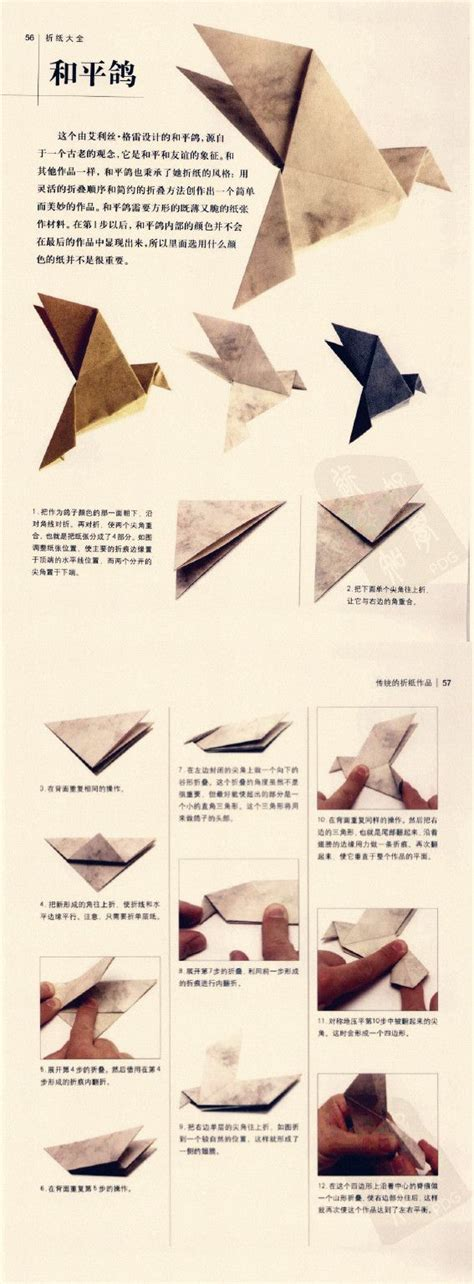 How To Fold A Paper Dove - the 25 best origami bird ideas on origami