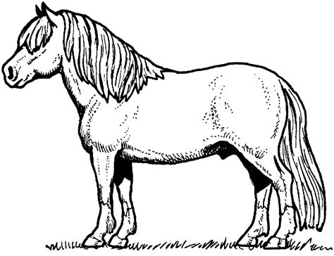 coloring pages ponies horses free horse coloring pages for download