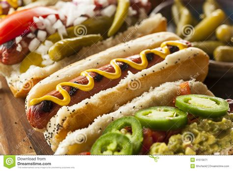 hots dogs gourmet grilled all beef hots dogs stock photo image 41513071