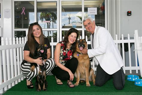 suburu hair salon dog subaru of pembroke pines shares the love by hosting a dog