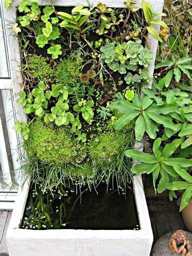 diy aqua farm 12 best aquaponics ideas images on aquaponics system hydroponic gardening and