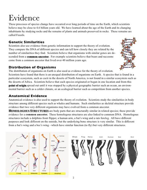 Homologous Structures Coloring Worksheet