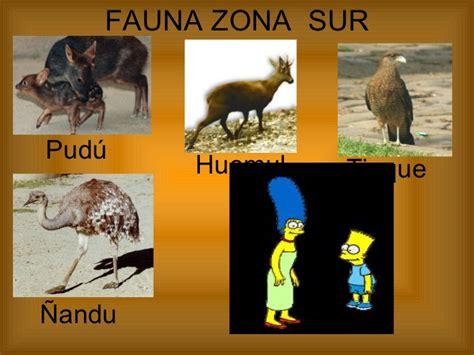 fauna de la zona sur chile en imagenes flora y fauna de chile