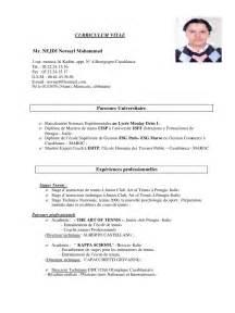 Curriculum Vitae For Court by Curriculum Vitae Pdf Par Nejdi Curriculum Vitae Norsayl