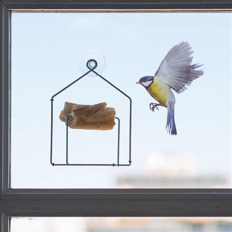 tipiou bird feeding tray for window metal house by pa