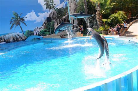 prezzo ingresso zoomarine zoomarine aquatic theme park praia da luz holidays