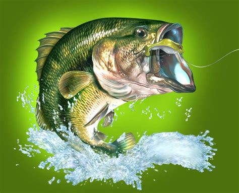 Fisch Bass by Bass Fish Fishing