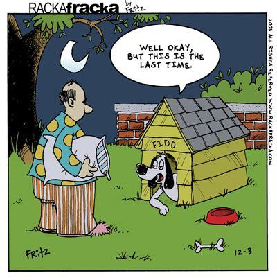 the dog house dementia in the dog house seeking the good life