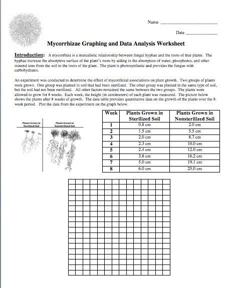 Graphing Worksheets Middle School Science by 228 Best Science Images On Science