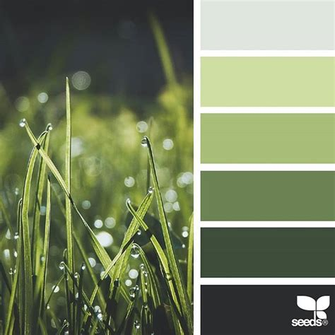 green palette colors 25 best ideas about color palette green on