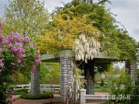 Kentucky Botanical Gardens The Arboretum Kentucky State Botanical Garden Of Kentucky Betty Photography