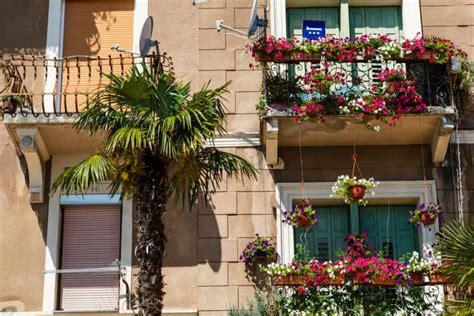 welche balkonpflanzen 252 berstehen den winter wohnungs - Welche Bettdecke Für Den Winter