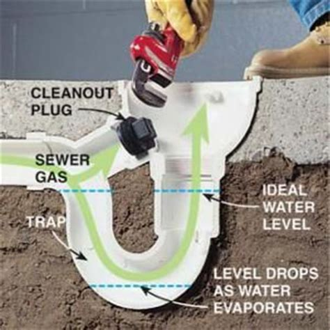 sewer smell in basement bathroom how to eliminate basement odor and sewer smells