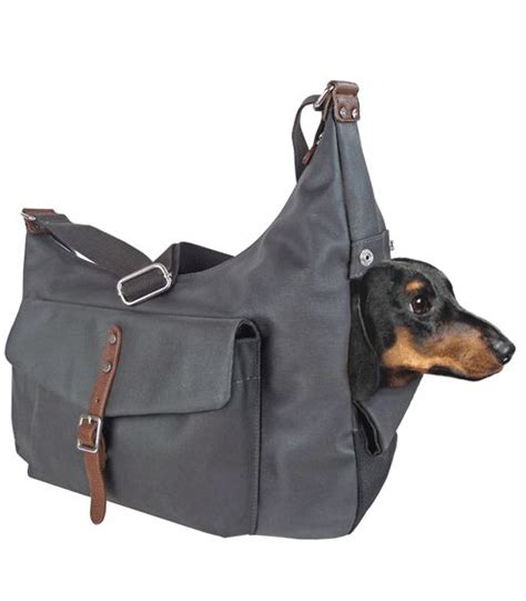 puppy bags 25 best ideas about carrier on carrier purse carrier bag and