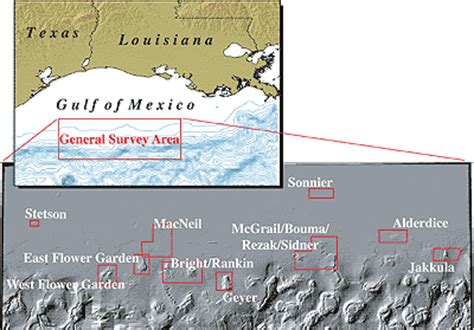 Gulf Of Mexico Continental Shelf by Multibeam Mapping Of Selected Areas Of The Outer