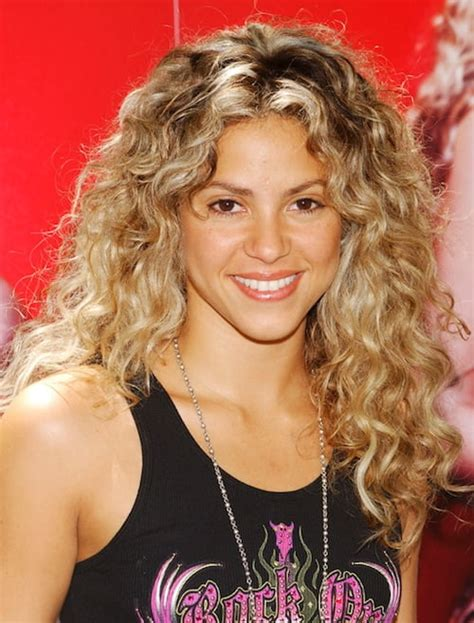 Poofy Hairstyles by 23 Hairstyles For Poofy Curly Hair Dohoaso