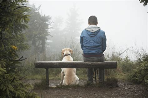 state with most dog owners 2016 dogs really can tell how their owners are feeling new