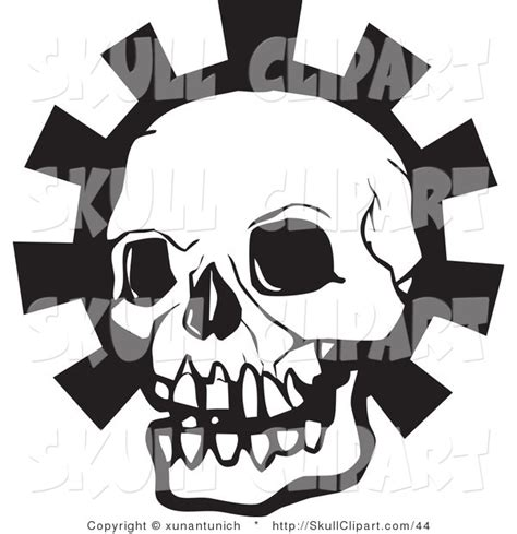 vector clip of a white and black human skull