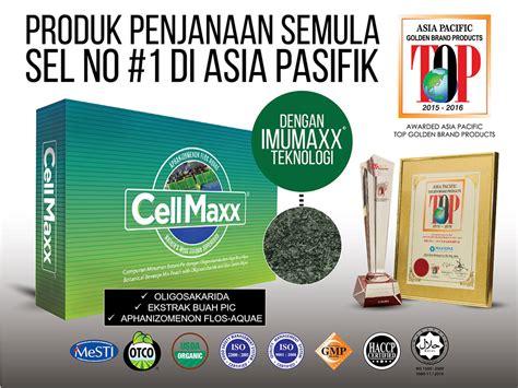 Brainking Plus Semarang jual agen harga manfaat distributor toko