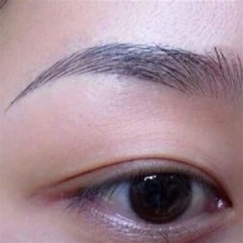 tattoo prices bristol 17 best images about tattoos eyebrow on pinterest