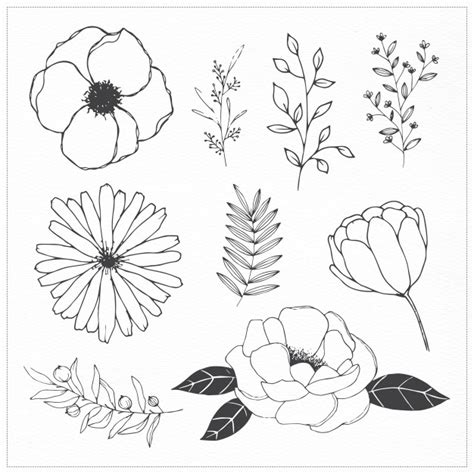 free doodle flower vector flowers and leaves vector free
