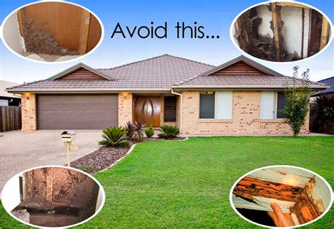 buying a house with termite damage what happens if my home termite inspector missed termites in maryland whitney llp