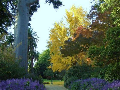 Botanical Gardens Albury Parks And Gardens Nature And Wildlife Australia