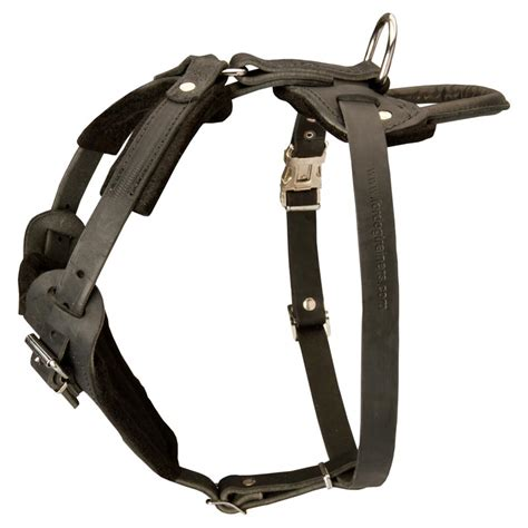 rottweiler leather collars leather rottweiler harness for agitation protection rottweiler store