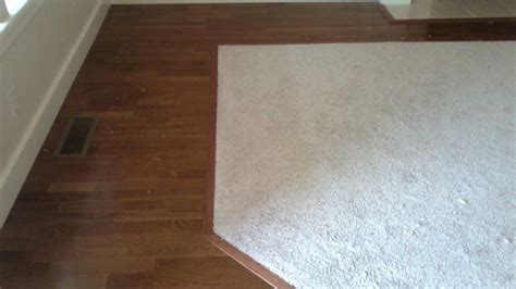 carpet or hardwood flooring which to choose amap arguments
