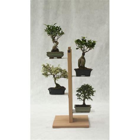 porta piante da interno piante da interno moderne le pi ville moderne di