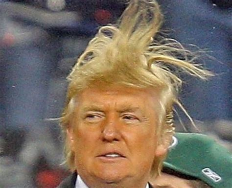 the despot s apprentice donald s attack on democracy books donald engaged in pervy behavior on the set of quot the