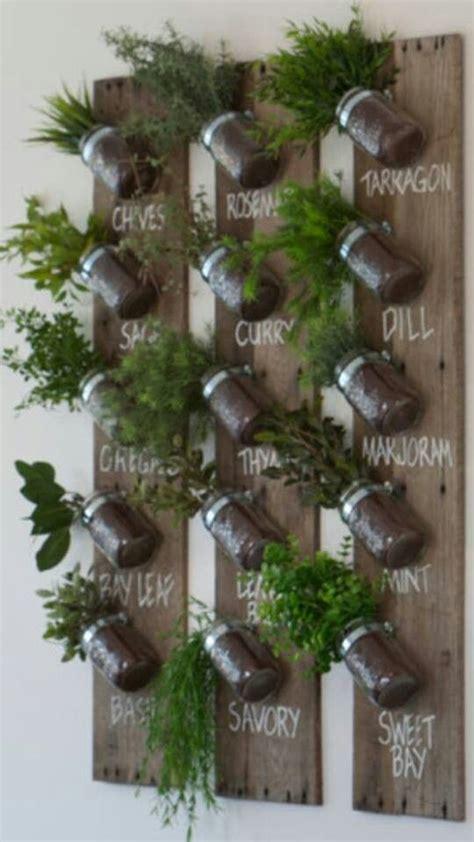 herb garden wall best 25 herb wall ideas on pinterest kitchen herbs indoor herbs and plants on walls