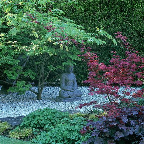a reverence for nature in the asian garden