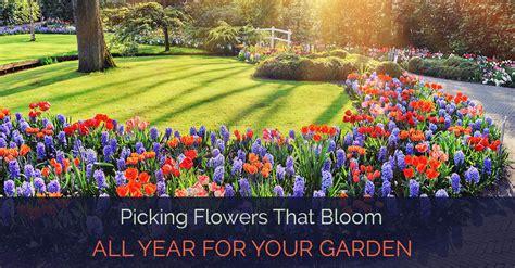 garden flowers all year 28 best garden flowers all year best shrubs that bloom
