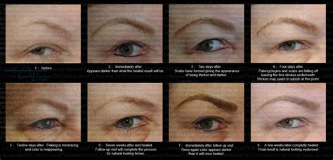 tattooed eyebrows healing process permanent makeup carolina permanent cosmetics