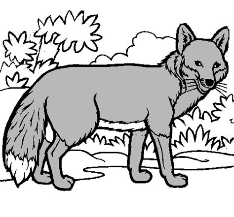 imagenes para dibujar de zorros dibujo de zorro pintado por asdf en dibujos net el d 237 a 02
