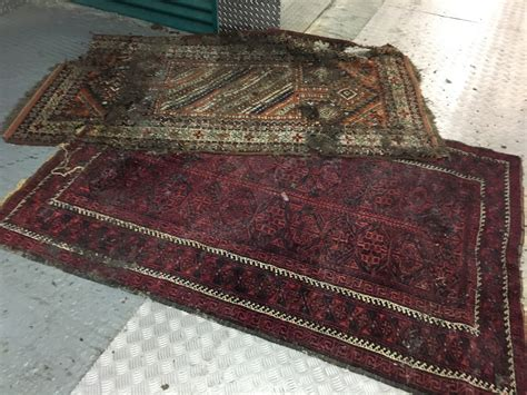 moth spray for wool rugs pest company deal with moth problem in carpets