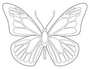 Line Drawing Templates by Free Butterfly Drawing Projects For