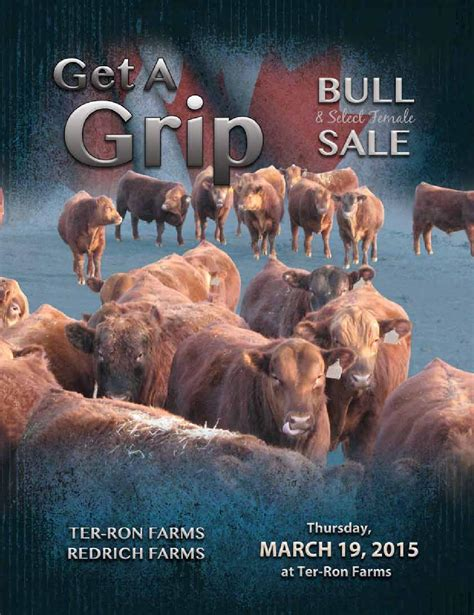 getting a grip build a custom parenting plan that actually works books get a grip bull femals sale 2015 by bohrson marketing