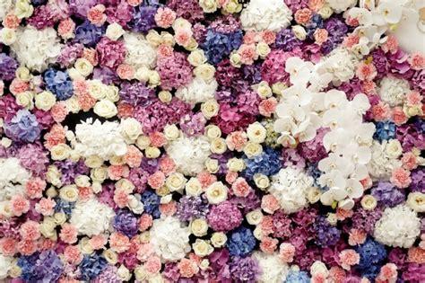 fiore cotone fiore di cotone foto e vettori gratis