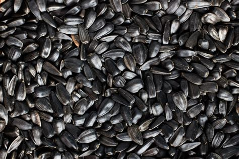 untreated black sunflower seeds 29 quality home remedies for premature grey hair