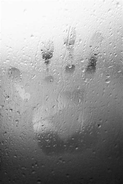 Feuchtigkeit Im Auto Grund by Feuchtigkeit Im Auto Herbst T 220 V Nord