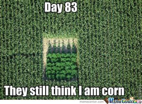 Think You Corn by 50 Most Camouflage Meme Pictures And Images
