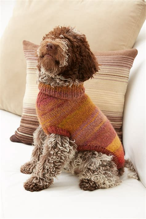 knit pattern puppy sweater proud puppy dog sweater in lion brand amazing l32076